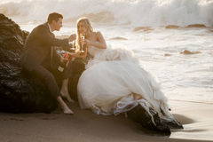 Young attractive bridal couple on beach with wine Stock Image
