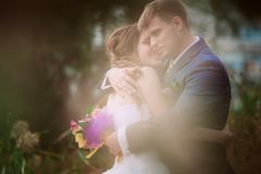 Young attractive bridal couple holding hands outdoors next to tree by lake Stock Photos