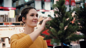 Young attractive brunette girl at the store chooses an artificial Christmas tree, Christmas decoration. Royalty Free Stock Photography