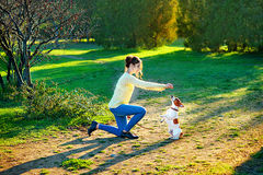 Young attractive brunette woman playing with her dog in green park at summer, lifestyle people concept. Young beautiful woman holds a hand over the pet dog`s paw Stock Photography