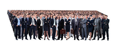 Young attractive business people - the elite business team Stock Photos