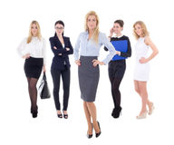 Young attractive business women isolated on white Royalty Free Stock Photos
