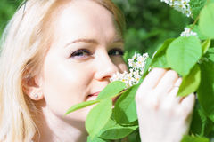 Young attractive caucasian woman in green forest with smile is sniffing blossom of bird-cherry, holding it by hands at sunny day royalty free stock photography