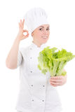 Young attractive cook woman in uniform with fresh salad showing Royalty Free Stock Photos