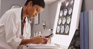 Young attractive doctor texting results of brain scans Royalty Free Stock Images