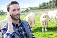 Young attractive farmer using mobile phone in a field Royalty Free Stock Photography