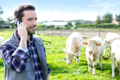 Young attractive farmer using mobile phone in a field Royalty Free Stock Photo