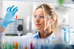 Young attractive female scientist examining test tube with subst Royalty Free Stock Photos