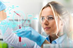 Young attractive female scientist researching in the laboratory. With futuristic scientific air interface with chemical formulas and research data in the royalty free stock photo