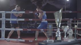Young male attractive fighter boxer athlete training workout practicing punch hook kick with personal coach boxing ring. Young attractive fighter male boxer stock footage