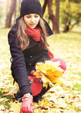 Young attractive girl in an autumn park Royalty Free Stock Image