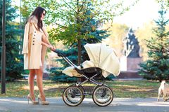 A young girl enjoys a walk with her baby. royalty free stock photo