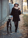 Young attractive girl dressed elegantly walks with the dog greyh Stock Photography