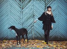Young attractive girl dressed elegantly walks with the dog greyh Stock Photo