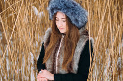 Young attractive girl embracing the snow in winter. Winter portr Royalty Free Stock Photos