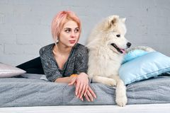 Young attractive girl with a short haircut and blonde hair along with her large white dog Samoyed lying on bed and looking over. stock photo
