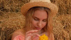 A young attractive girl in a straw hat in a good mood sniffs a yellow flower, then tears petals from him and blows them off her pa. Lm. 4k. 4k video stock video