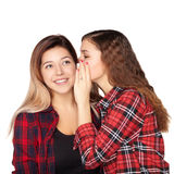 Young attractive girl whispering in the ear of his sister stock image