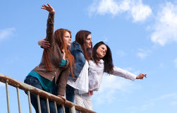 Young and attractive girlfriends Royalty Free Stock Images