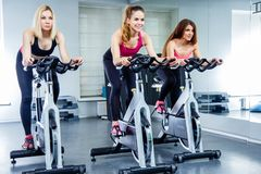 Young attractive girls do cardio training on a stationary bike at the gym. Royalty Free Stock Photo