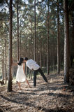 Young attractive Indian Couple kissing in forest Stock Images
