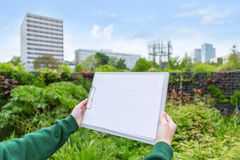 Young attractive landscaper woman working in a public park. View of a Young attractive landscaper woman working in a public park stock image