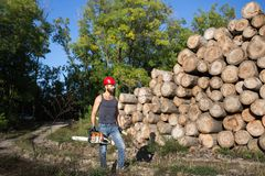 Lumberjack with chainsaw and ax in forest. Young attractive lumberjack with beard carrying chainsaw and ax beside stacked trunks Stock Photos