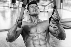 Young Attractive Man Training With Trx Fitness Straps royalty free stock image