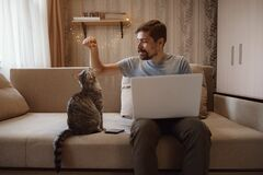 Young attractive smiling guy is browsing at his laptop. Sitting at home on the cozy beige sofa at home, wearing casual outfit with his pet - gray cute cat