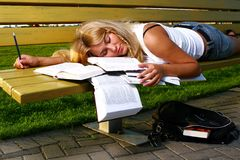 Young attractive student reading the book Royalty Free Stock Image