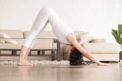 Young attractive woman in adho mukha svanasana pose, living room Stock Image
