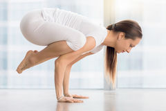 Young attractive woman in Bakasana pose against floor window Stock Photography