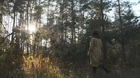 Young attractive woman in beige coat and warm brown scarf walking in autumn forest. Beautiful autumn wood with yellow leaves stock footage