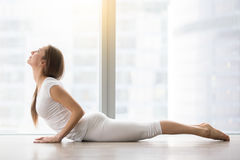 Young attractive woman in Bhujangasana pose against floor window Royalty Free Stock Photo