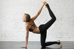 Young attractive woman in Bird dog pose, studio background. Young attractive woman practicing yoga, stretching in Bird dog exercise, tiger pose, working out stock photo