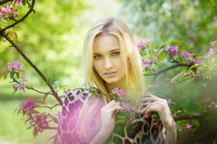 Young attractive woman in blooming spring trees Royalty Free Stock Images