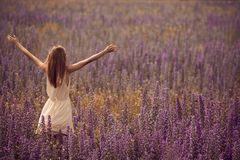 Attractive woman in dress at flower field. Young attractive woman in dress at flower field Stock Images