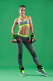 Young attractive woman with dumbbells in her hands posing in studio Royalty Free Stock Photo