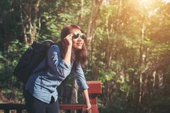 Young attractive woman enjoy with nature surrounding, achieved a. Dventure background royalty free stock image