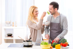 Young attractive woman give food to her husband to taste Royalty Free Stock Images