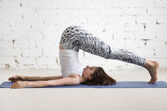 Young attractive woman in Halasana pose, white studio background Stock Photos