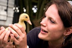 Young Attractive Woman Holding Duckling Royalty Free Stock Photo