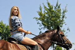 Young attractive woman horseback riding Royalty Free Stock Photos