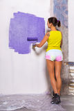 Young attractive woman paints white wall with purple paint rolle. Young attractive woman paints white wall and purple paint roller Royalty Free Stock Photo