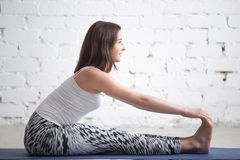 Young attractive woman in paschimottanasana pose, white studio Royalty Free Stock Photos