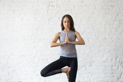 Young attractive woman in tree pose, studio background. Young attractive woman practicing yoga, standing in Vrksasana exercise, Tree pose with mudra, working out Royalty Free Stock Images