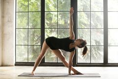 Young attractive woman in Utthita Trikonasana pose, studio backg. Young attractive woman practicing yoga, stretching in Utthita Trikonasana exercise, extended Stock Photography