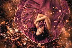 Young attractive woman in purple dress lying in the middle of autumn leaves. Top view, leaves falling royalty free stock image