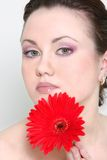 Young attractive woman with red flower over w Royalty Free Stock Image
