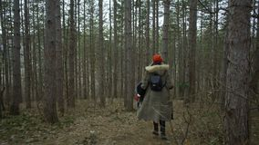 Young attractive woman with red hat wanders in forest touching tree. Young attractive woman with red hat and red skirt wanders along pathway leading trough stock footage
